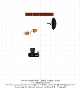 lighting-diagram-1368200978
