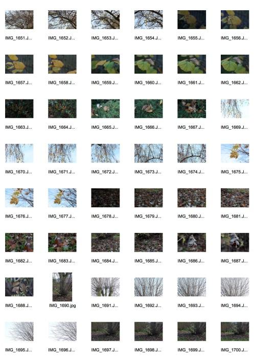 Autumn 3 Contact Sheet 1